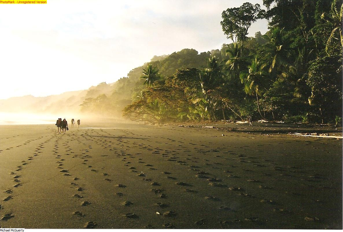 footprints-in-the-sand-costa-rica-001.jpg